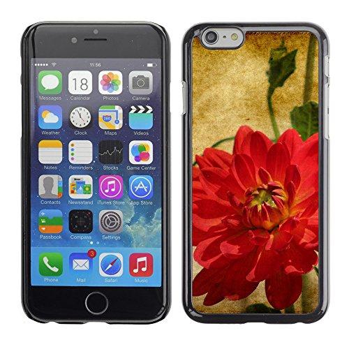 """Premio Sottile Slim Cassa Custodia Case Cover Shell // F00007211 une fleur // Apple iPhone 6 6S 6G 4.7"""""""