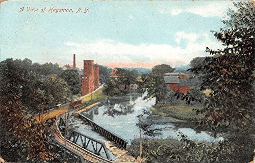 Hagaman New York Birdseye View Of City Antique Postcard K62520