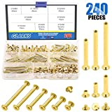 Glarks 120 Sets Chicago Screws Assortment, M5 x 6/10/20/30/40/50 Brass Plated Screw Posts Bookbinding Posts Binding Screw Chicago Button Post Rivets Screw Belt Screws Leather Photo Albums Screw