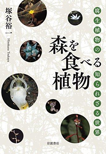 森を食べる植物――腐生植物の知られざる世界