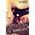 Forgotten Promises (The Promises Series Book 2)