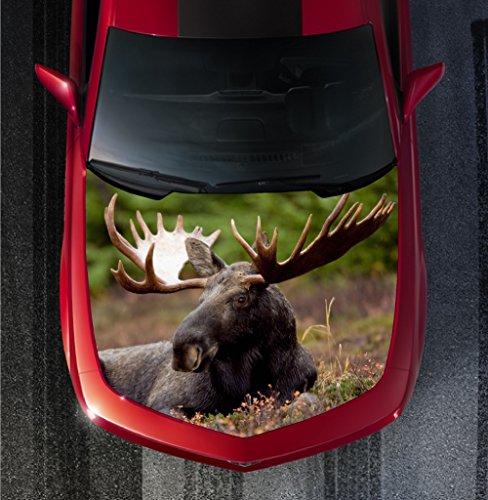 Moose Exhaust Wrap - 4