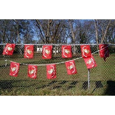 Usmc Marines Marine Bunting Party Flags Banner (12 Flags 20 Foot Long): Toys & Games