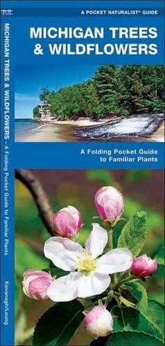 Michigan Trees & Wildflowers: A Folding Pocket Guide to Familiar Species (A Pocket Naturalist Guide)