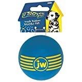 JW Pet Company iSqueak Ball Rubber Dog Toy, Medium, Colors Vary
