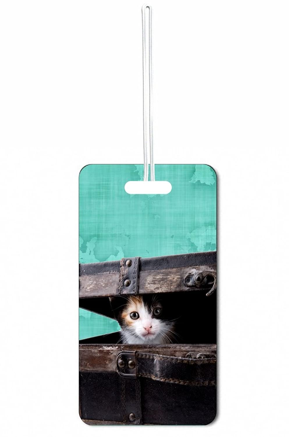 Amazon.com   Kitten In Suitcase Max Wilder TM Luggage Tag with ...