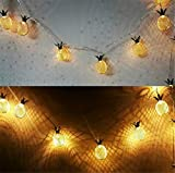 SPP PANDA Christmas Lights Home Decoration DIY Decor Bedroom Outdoor Decorative Light - Pineapple - 2 M 20 Lights Battery Operated (Without Battery) 2pcs