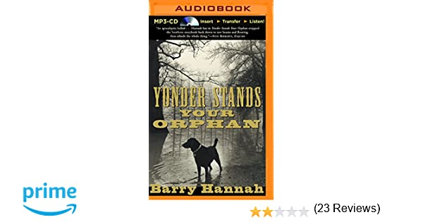 Yonder Stands Your Orphan Barry Hannah Brian Sloan - 23 of the strangest books to ever appear on amazon