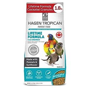 Hari Tropican Cockatiel - Granuli a vita, 820 g 511n92QBR9L. SS300