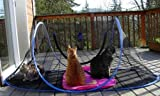 Outdoor Feline Funhouse by Wildwhiskers