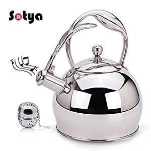Whistling Stainless Steel Stovetop Teakettle Best Tea Kettle Pot Teapot Stove with detachable anti-hot gloves,2.75 Quart (Stainless Steel-Mirror finish Color)