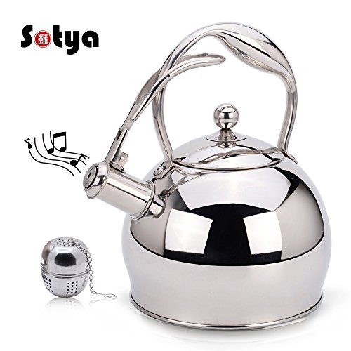 Whistling Stainless Steel Stovetop Teakettle Best Tea Kettle