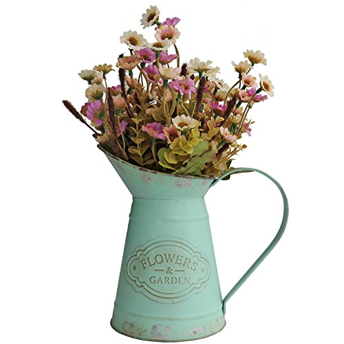 (HyFanStr French Style Mini Metal Vases for Flowers Rustic Pitcher Plant Garden Decor)