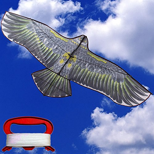 Sale Outdoor Fun Sport Kite 1.55 m Eagle Kite Line Animal Kites Adult Kid's Toy (Carnival Man With Direction Sign)