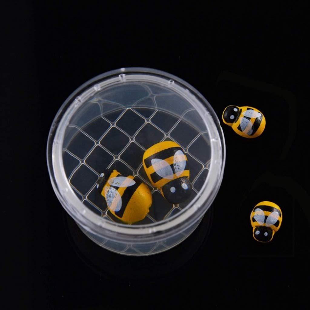 Homyl 5 unds Cajas con Tapa con Magnifier Guardar Insectos Juegos de Ni/ños