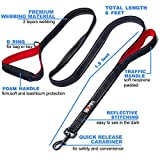 tobeDRI Heavy Duty Dog Leash - 2 Padded Handles, 6 feet long - Dog Training Walking Leashes for Medium Large Dogs (Black)