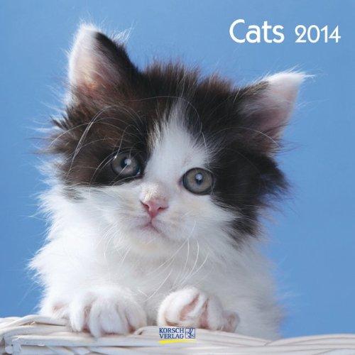 Cats 2014. Broschürenkalender