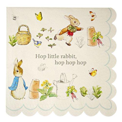 Meri Meri Party Napkin, Peter Rabbit Scallop Edge - Large