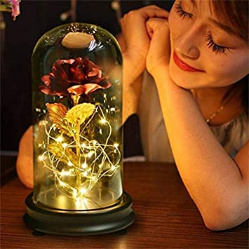 Beauty and The Beast Rose 24K Gold Plating Rose Flower in a Glass Dome with LED Light String Gift Women Girls on Birthday Valentines Day Mothers Day Christmas Holiday