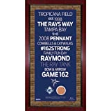 MLB Tampa Bay Rays Subway Sign Wall Art with Authentic Dirt from Tropicana Field, 16x32-Inch