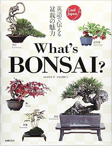 Whats BONSAI?