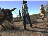 Buster's Road Rules (Tucson, Arizona)
