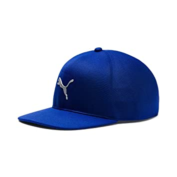 61f34671 Puma Golf 2018 Men's Evoknit Pro Hat (Men's, S/M), Surf