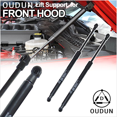 2004 Bonnet (VioletLisa Brand New 2pcs Front Hood Bonnet Gas Lift Supports Strut Shocks Springs Fit Nissan 2003-2007 Murano)