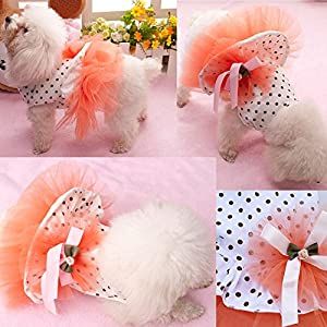i'Pet® Floral Princess Cat Party Dress Small Dog Tutu Ball Gown with Flower Puppy Multi-layer Lace Mesh Skirt with Dot Doggy Photo Apparel Doggie Birthday Stretchy Clothes Spring Summer Holiday Wear with Ribbon Halloween Classics Collection Costume (Orange, X-Small)