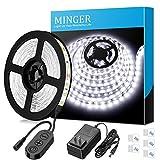 MINGER 16.4ft/5M LED Flexible Strip Light Kit, Daylight White with 300 LEDs