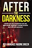 After The Darkness: A survivor's TRUE story of childhood incest, rape, abuse, domestic violence , and her ability to overcome the negative impact these events had on her life.