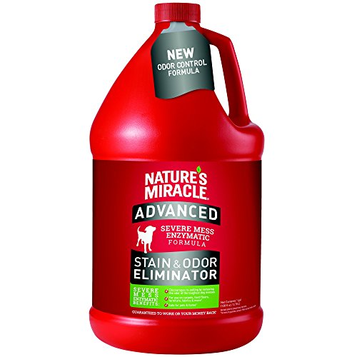 natures-miracle-advanced-stain-and-odor-eliminator-gallon