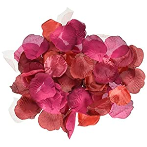 Darice RC-7209-69 Decorative Satin Loose Rose Petals, Burgundy, 100-Pack 56