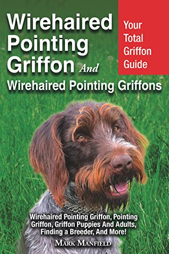 Wirehaired Pointing Griffon And Wirehaired Pointing Griffons: Your Total Griffon Guide Wirehaired Pointing Griffon, Pointing Griffon, Griffon Puppies and Adults, Finding a Breeder, & More! (Best Pointing Dog Breeds)