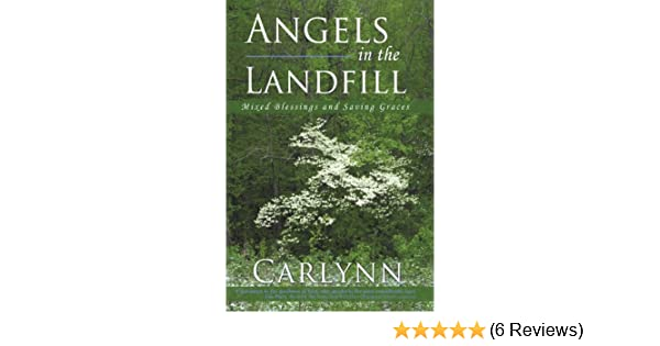 Angels in the Landfill