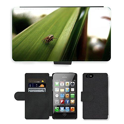 Just Phone Cases PU Leather Flip Custodia Protettiva Case Cover per // M00128867 Araignée Jardin Araignée Insecte Nature // Apple iPhone 4 4S 4G