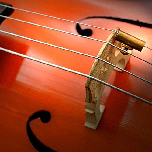Canomo 1 Pack Golden Brass Cello Wolftone Eliminator Wolf Tone Mute Suppressor by Canomo (Image #4)