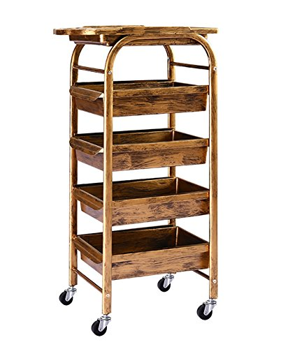 Salon SPA Golden Retro Hairdressing Trolley 5 Tiers Storage Cart Coloring Beauty Salon Hair Dryer Holder with 5 Drawers for Tool