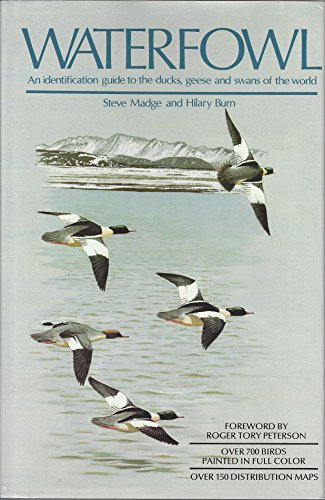 Waterfowl: An identification guide to the ducks, geese and swans of the world