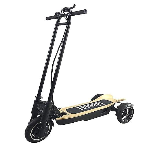 WLPT Scooters eléctricos, 10T E-Scooter 10 Pulgadas Tres ...
