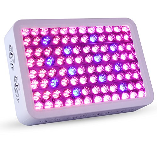 Effect Led Light Plant Growth - 9