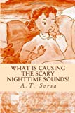 What Is Causing the Scary Nighttime Sounds?, A. T. Sorsa, 1463566182