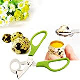 Bazaar Stainless Steel Pigeon Quail Egg Scissors Egg Cutter Egg Opener Kitchen Gadget Tools