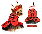 Lady Bug Fairy Dog Halloween Costume Dress Harness Antennae & Leash Attachment