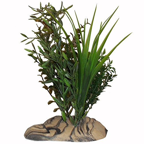 Rock Garden 12'' Natural Green Plant with Decorative Resin Base, Large by Rock Garden