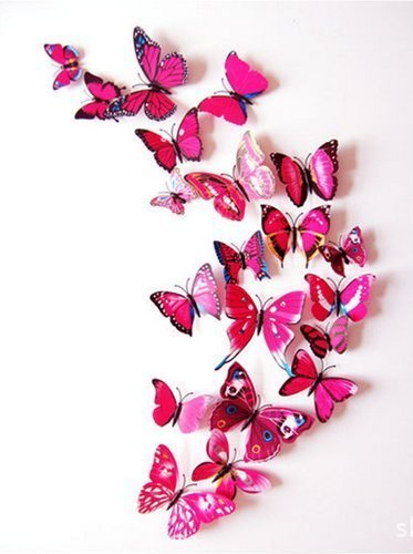 Pindia Set Of 12 Pc Decorative Beautiful 3D Butterfly Removable Wall Sticker Home Wall Décor...