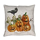 Royal Lion Burlap Suede or Woven Throw Pillow Cute Halloween Pumpkins and Crow - Cotton Twill, 20 Inch