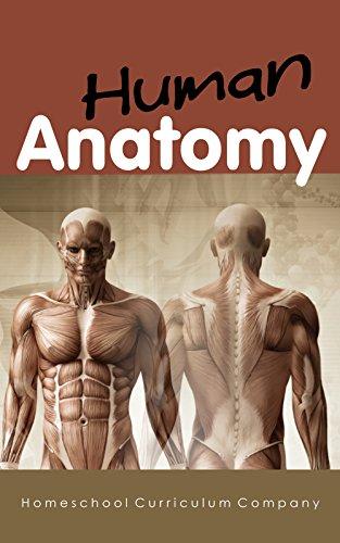 Amazon Anatomy Homeschool Curriculum Human Anatomy For Kids