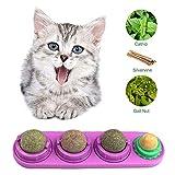 Mint Cat Treats