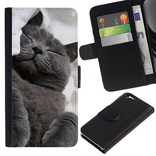 LASTONE PHONE CASE / Luxe Cuir Portefeuille Housse Fente pour Carte Coque Flip Étui de Protection pour Apple Iphone 6 4.7 / Russian Blue Korat Cat Black Feline